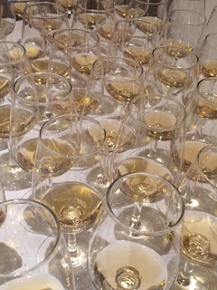 Tequila tasting glasses lined up