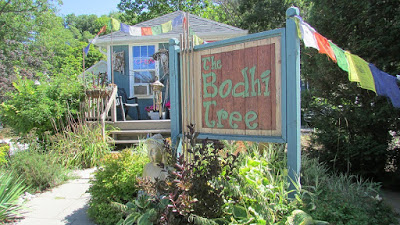 Bodhi Tree store in Port Stanley