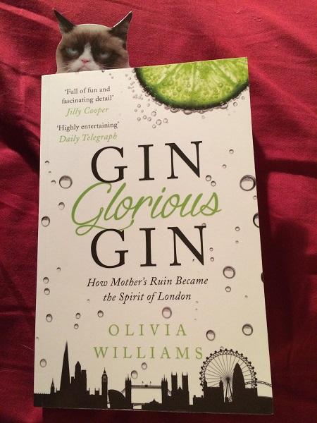 Gin Glorious Gin book