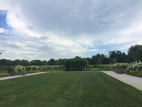 The grounds at Oxley Estate Winery in Lake Erie North Shore.