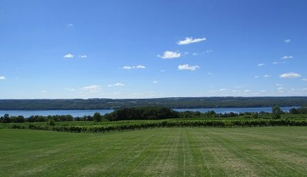 The View from Standing Stone Vineyards in The Finger Lakes.