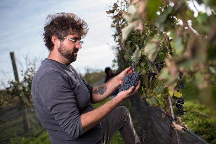 Quai Du Vin Winemaker Jamie Quai